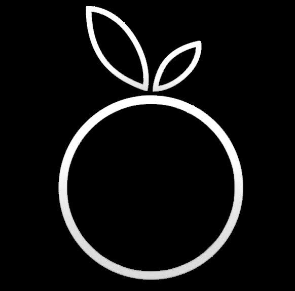 peachcycles.com